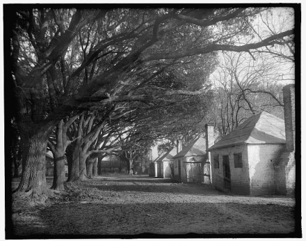 Slave Quarters Under The Oaks At The Hermitage in Savannah, 1900- 1915